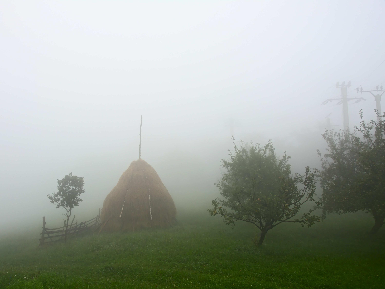 Haystack on a misty mountain slope in Piatra Craiului mountains, Romania.