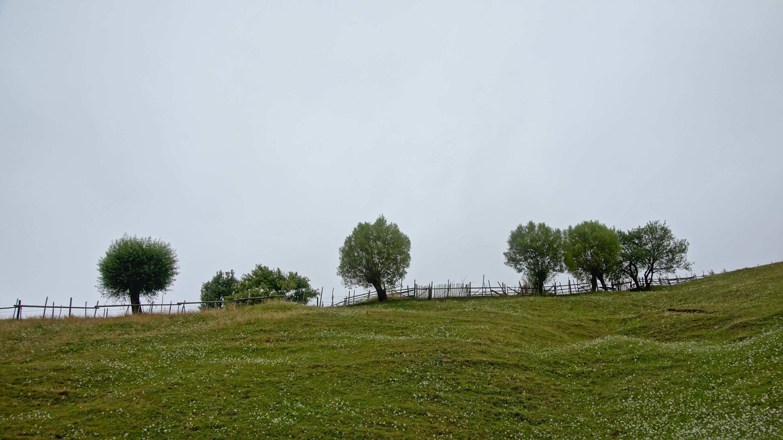 Another view from Piatra Craiului mountains, Transylvania