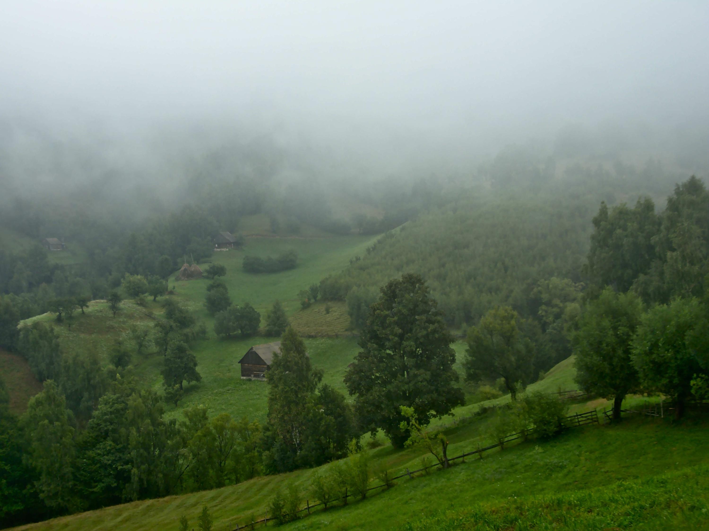 Misty mountain slope.